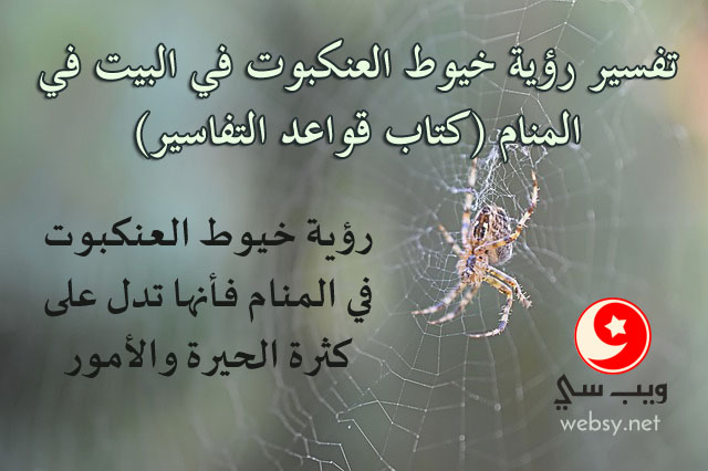 تفسير رؤية خيوط العنكبوت في البيت في المنام (كتاب قواعد التفاسير)